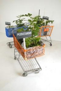 MobileGarden2 (resize)